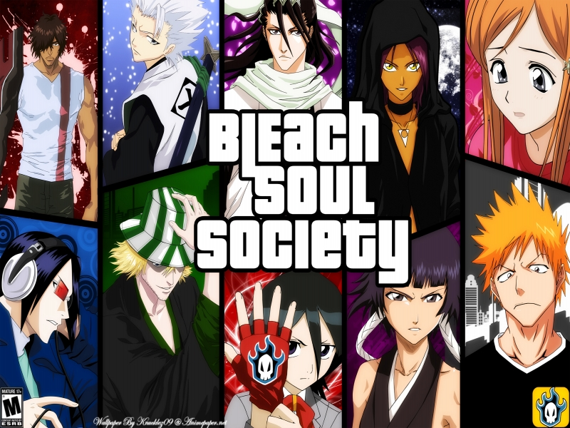 bleach 294 vostfr hd