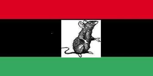 Le prix de la trahison: les vrais rats ne se bouffent pas entre eux