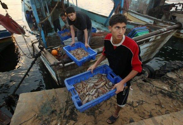 Des Palestiniens près du port de Gaza.