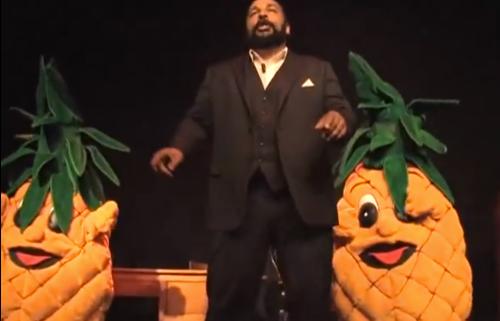 ananas4